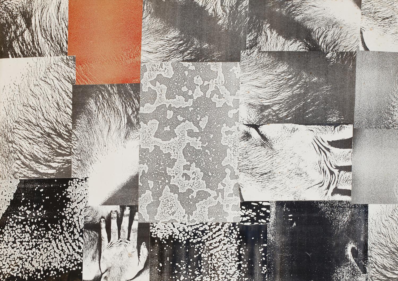reprodução fotográfica de obra de arte / artwork reproduction.