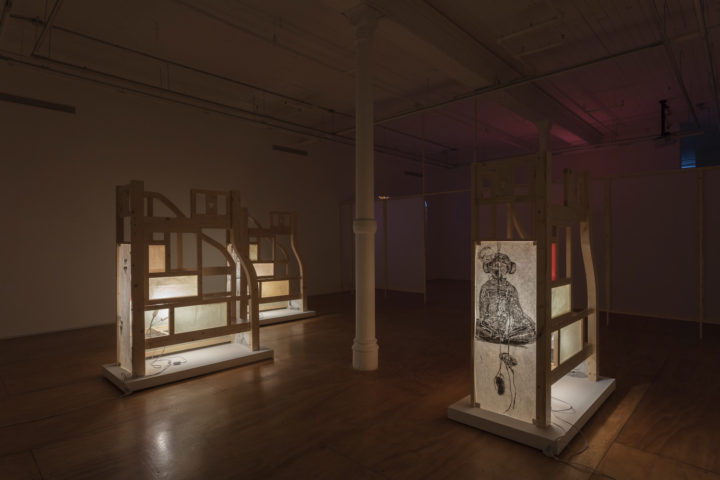 Installation view: Amy Lien and Enzo Camacho