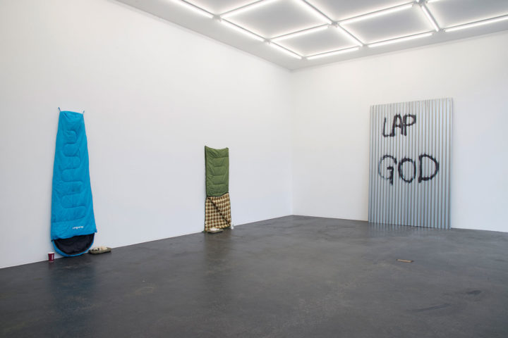 "Keith Farquhar ""Lap Gods"" installation view"