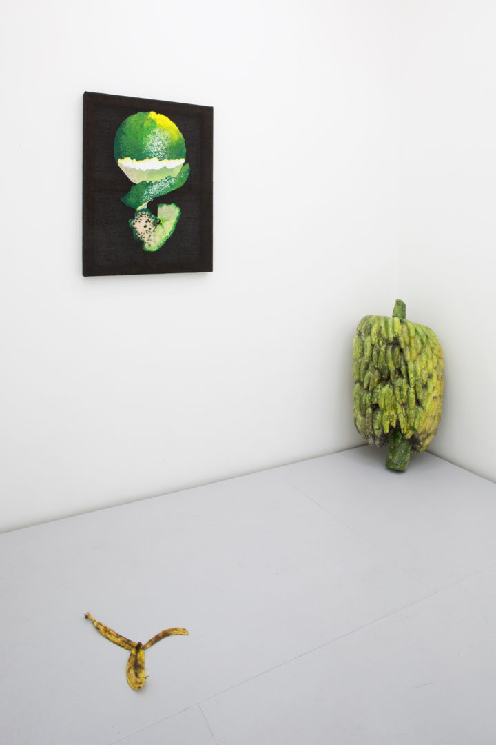 """The Lulennial II: A Low-Hanging Fruit"" installation view"