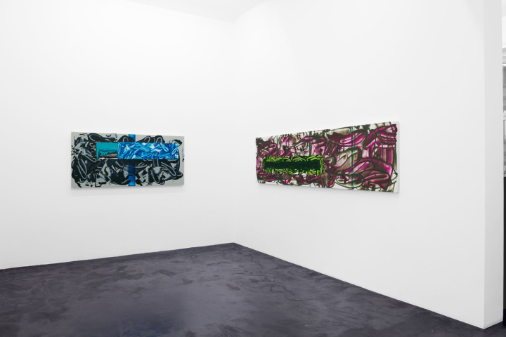 David Reed, »I'm trying to get closer but I'm still a million miles from you«, installation view